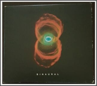 Pearl Jam: Binaural Grunge Genre